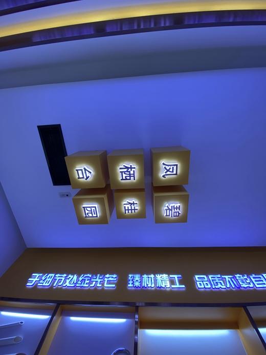 碧桂园凤栖台体验馆设计案例的效果图32