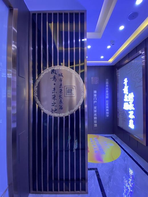 碧桂园凤栖台体验馆设计案例的效果图6