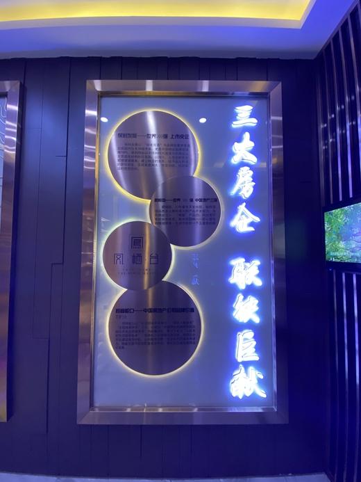 碧桂园凤栖台体验馆设计案例的效果图4