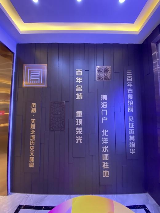 碧桂园凤栖台体验馆设计案例的效果图2